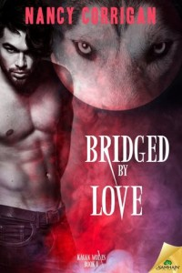 Bridged by Love Cover