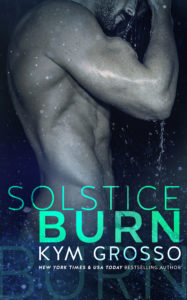 Solstice Burn-Cover-Large